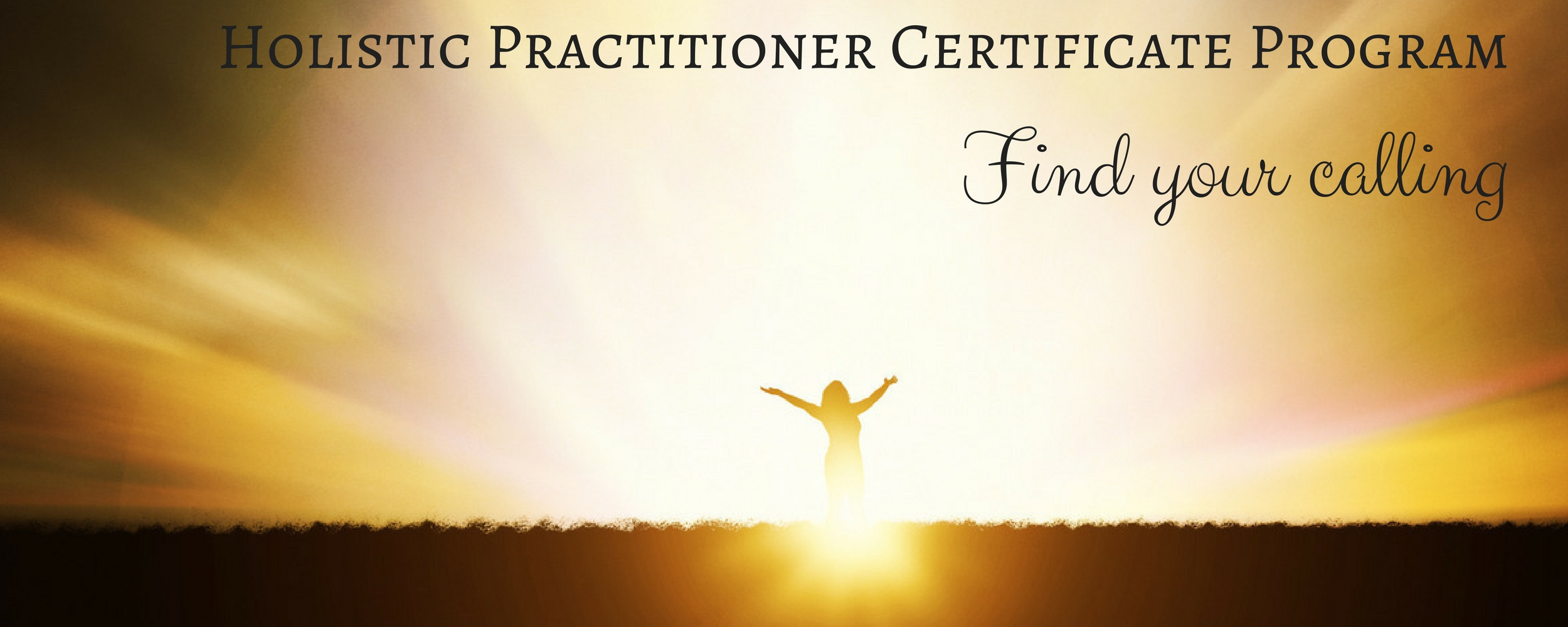 Holistic Practitioner Certificate Program The Psych Institute